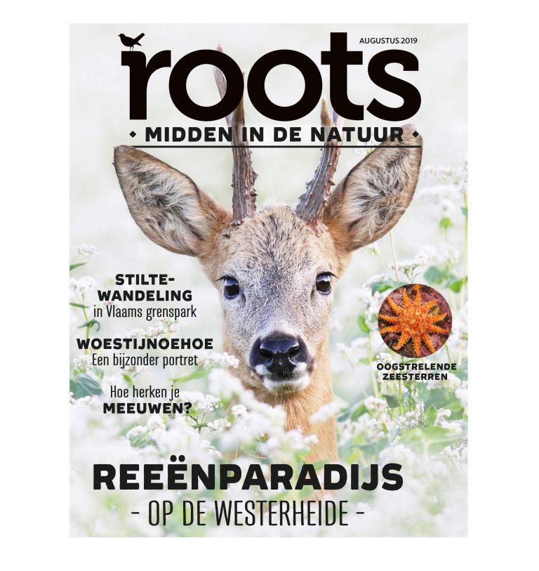 Roots editie 8 – augustus 2019