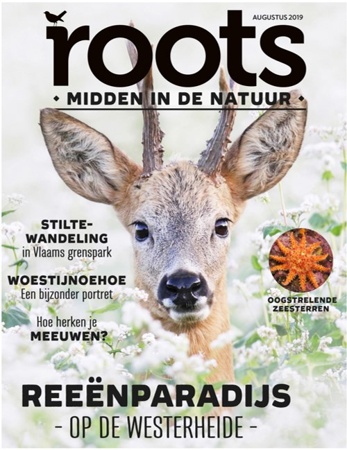 ED8-AUG-2019-RTS-COVER-LR-zonder-witrand