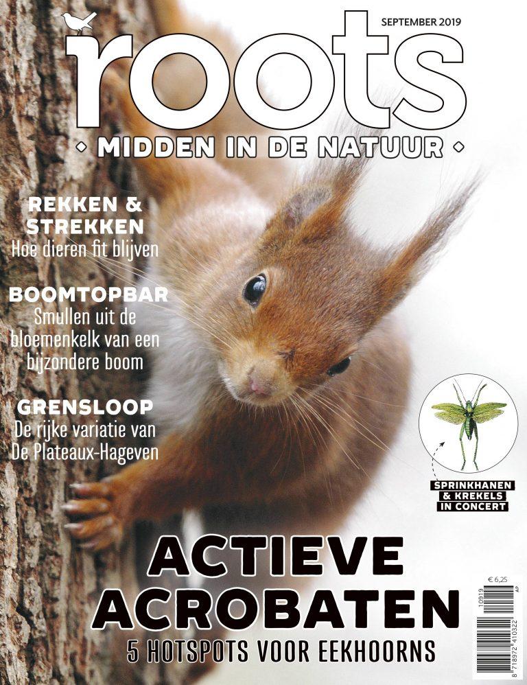 roots-editie-9-september-2019
