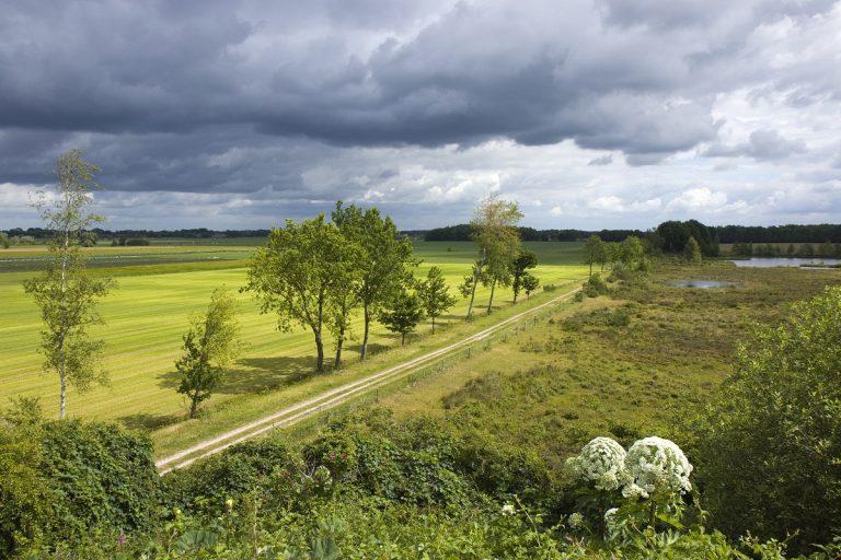 Natuurommetje: de hotspots van het Reestdal