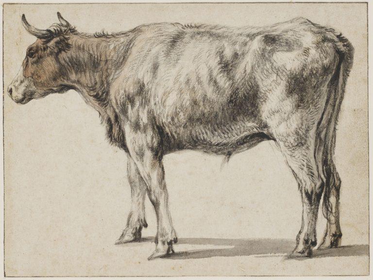 Expositie met dierentekeningen van beroemde kunstenaars
