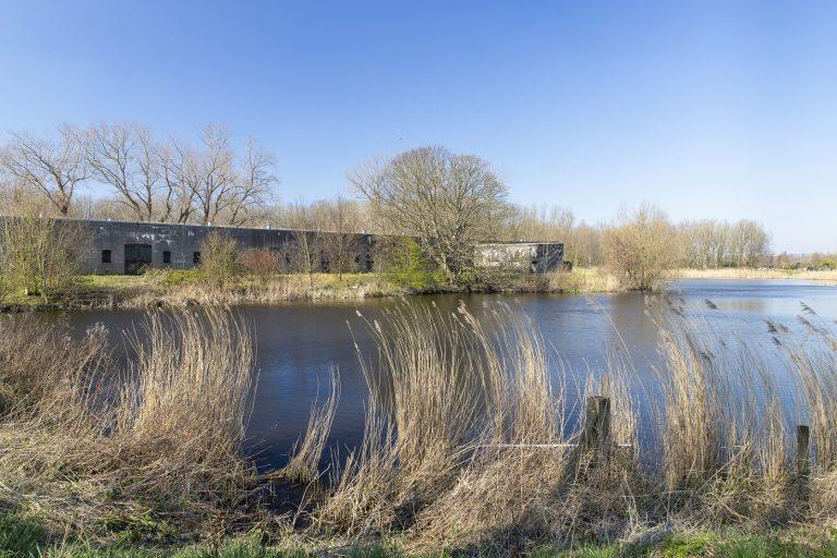 Nieuw natuurommetje: langs de Stelling van Amsterdam