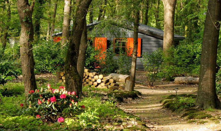 10 ideale Natuurhuisjes voor de lentevakantie!