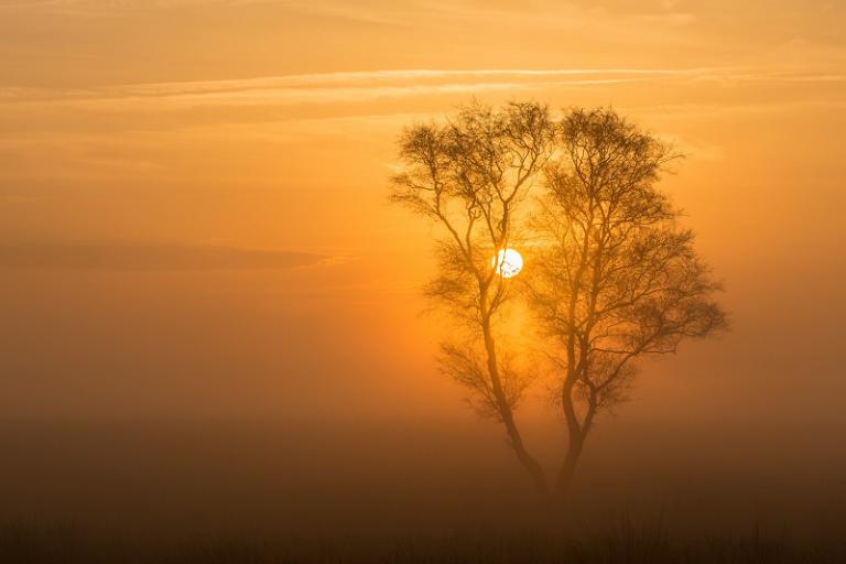 De zon in vuur en vlam