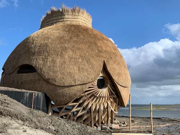 Nieuwe vogelkijksensatie: reuzenei in het Haringvliet