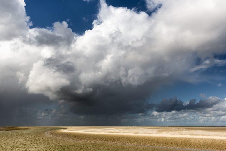 Stemmen voor het Mooiste Natuurgebied van Nederland?