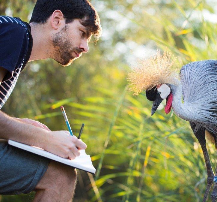 Joris De Raedt | Roots Vogelfestival