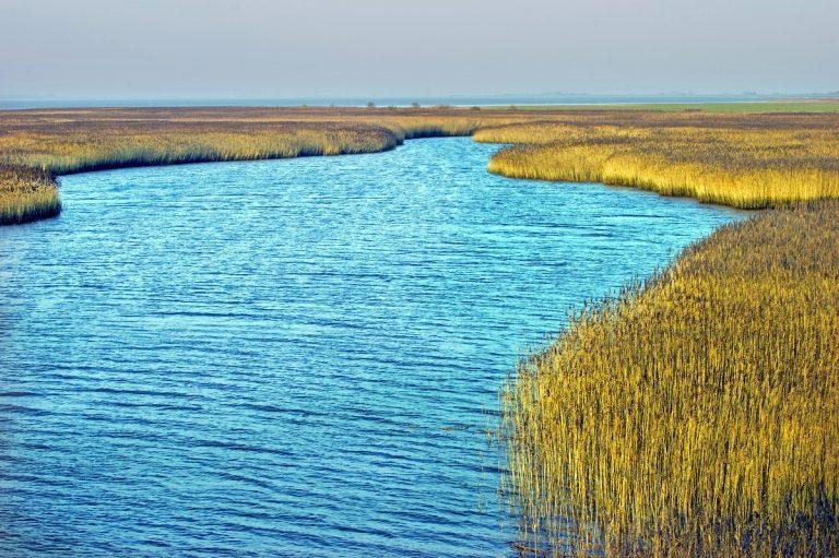 Uitkijktoren De Kiekkaaste: rustgevend zicht op werelderfgoed Waddenzee