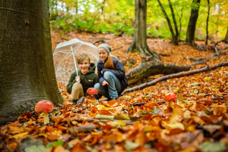 Week van het Landschap 16 t/m 31 oktober: ontdek de verrassende natuur dicht bij huis