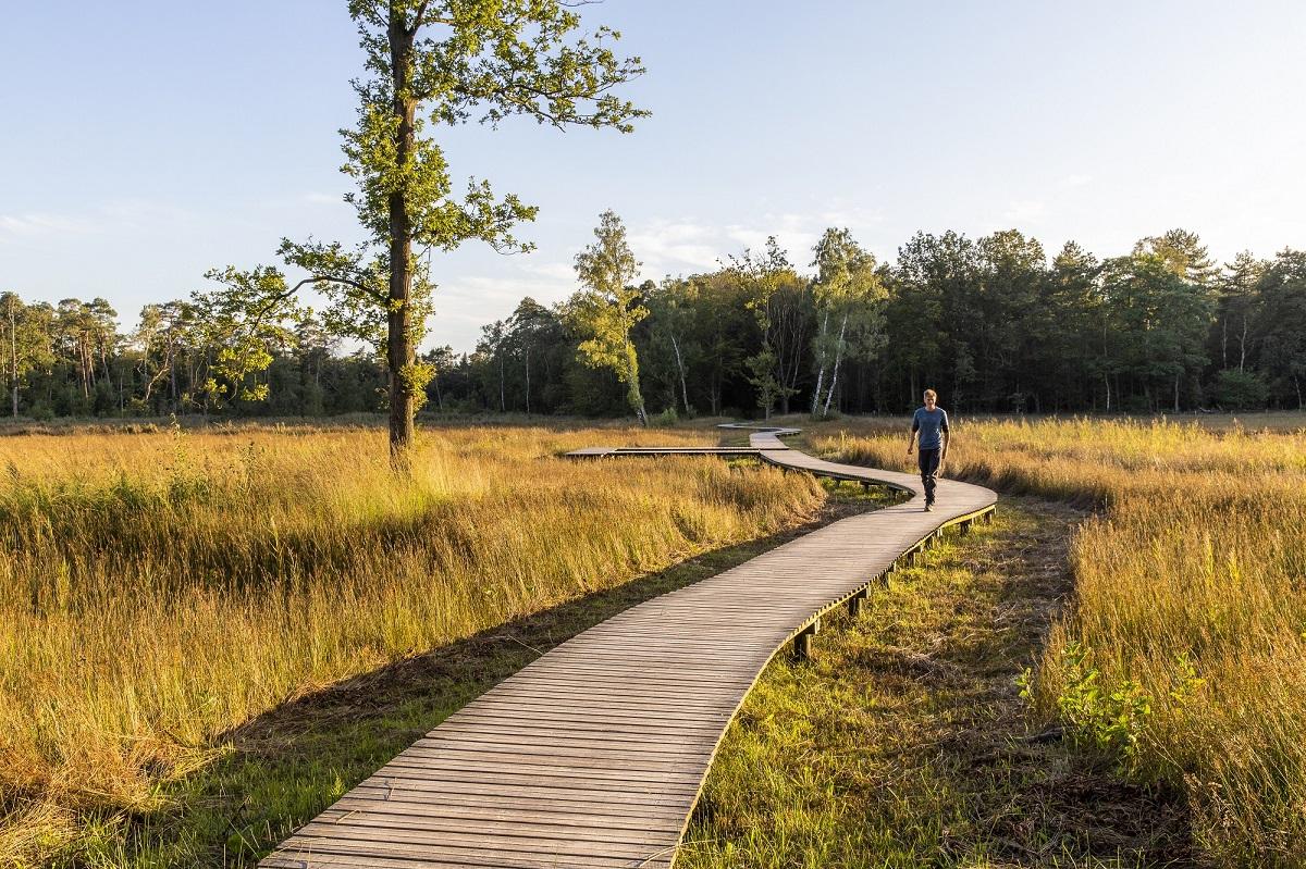 Nieuwe wandelroute: landgoed Tongeren