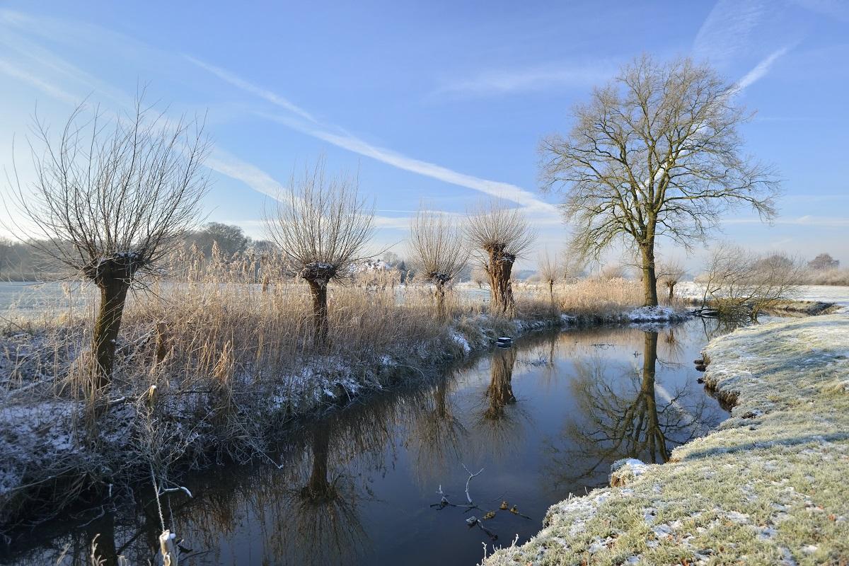 Rootswandeling Winter in de Achterhoek