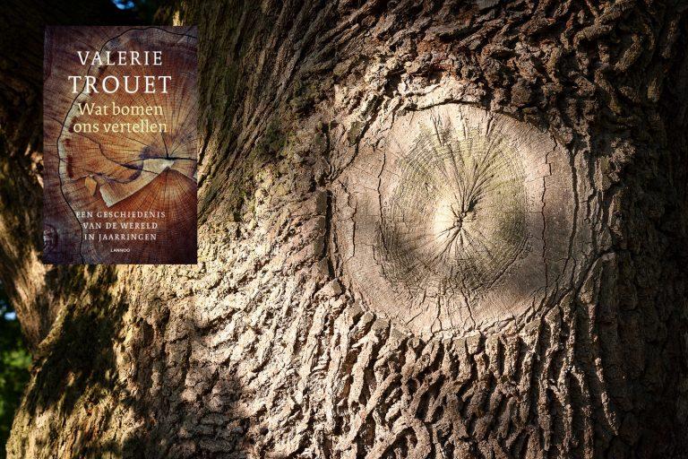 Valerie Trouet wint met bomenboek de Jan Wolkers Prijs 2020