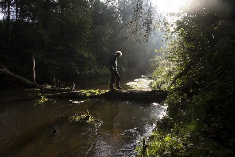 Het plezier van alleen zijn in de natuur