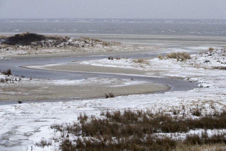 Uitwaaiwandeling: bij de duinen van Goeree is de zee de baas