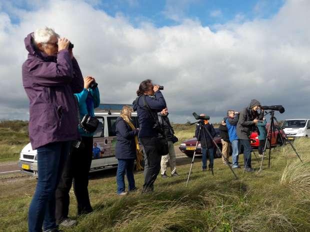 Heerlijke Roots vogelweekends op Texel en Vlieland