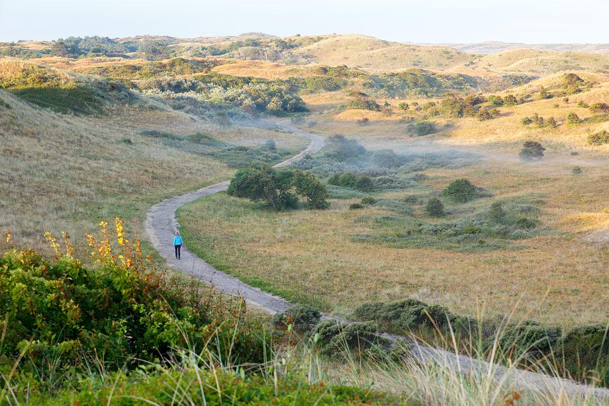 Nieuwe route: wandelen door het Noordhollands Duinreservaat