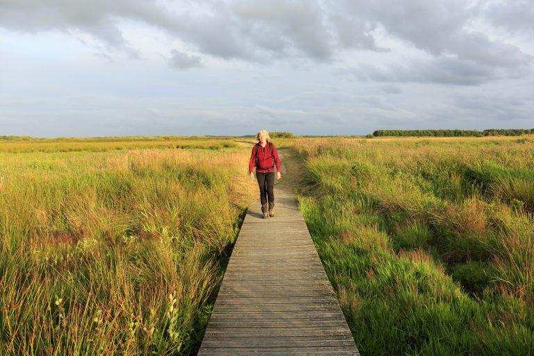 Wandelen in het Fochteloërveen: een vleugje landlopersgevoel