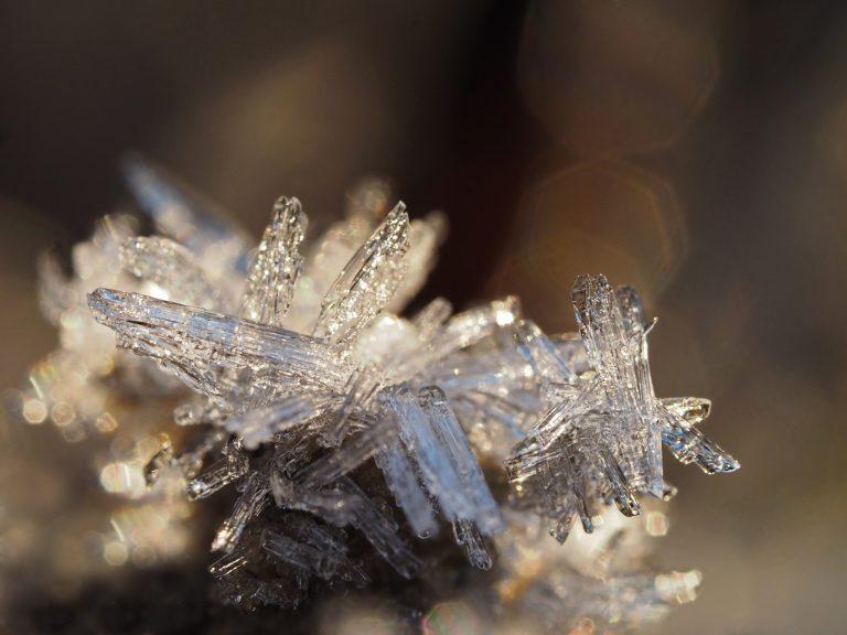 Kunst van de natuur: een koud kunstje