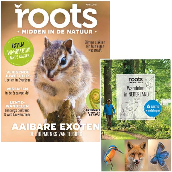Roots editie 04 2021+ Wandelen in Nederland