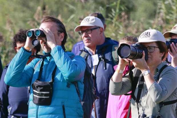 Roots Vogelfestival 2020 geannuleerd