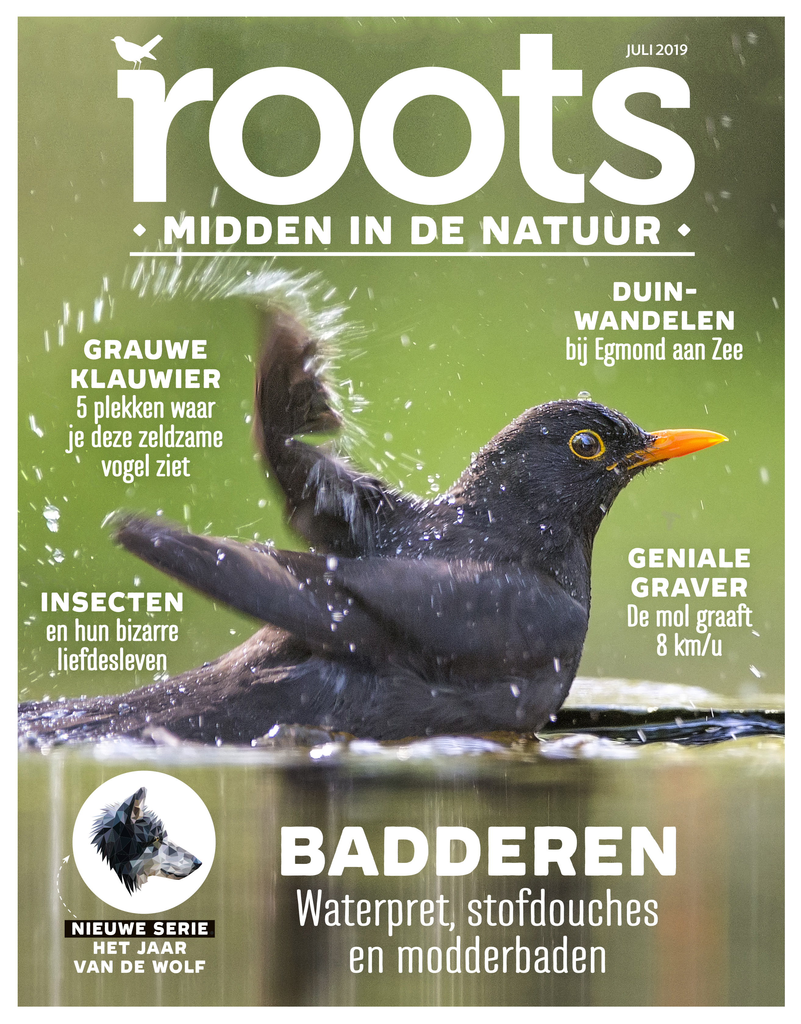 ROOTS-COVER-JULI