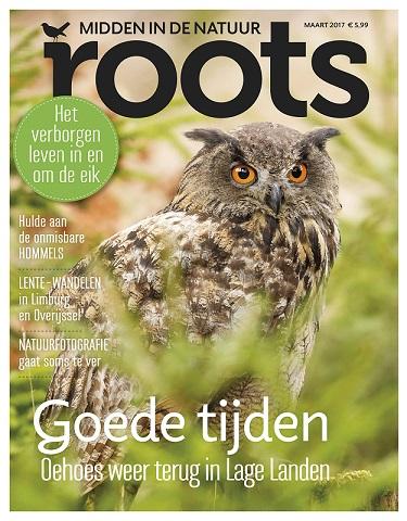 ROOTS COVER MAART 2017 KLEIN2