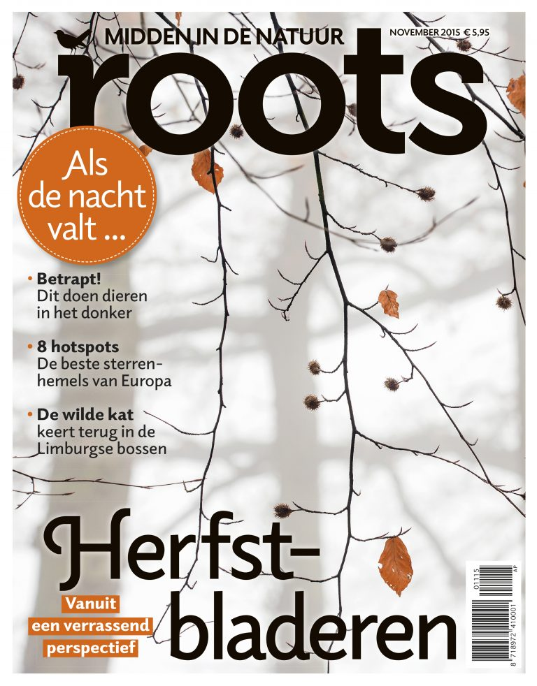 De Roots van november is uit