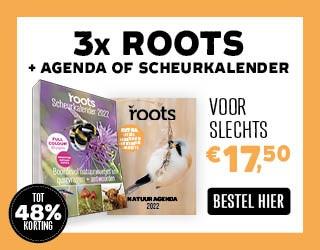 Aanbieding Roots met agenda kalender 2022