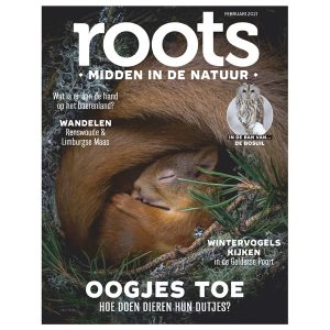 Roots-02-2021-600x600