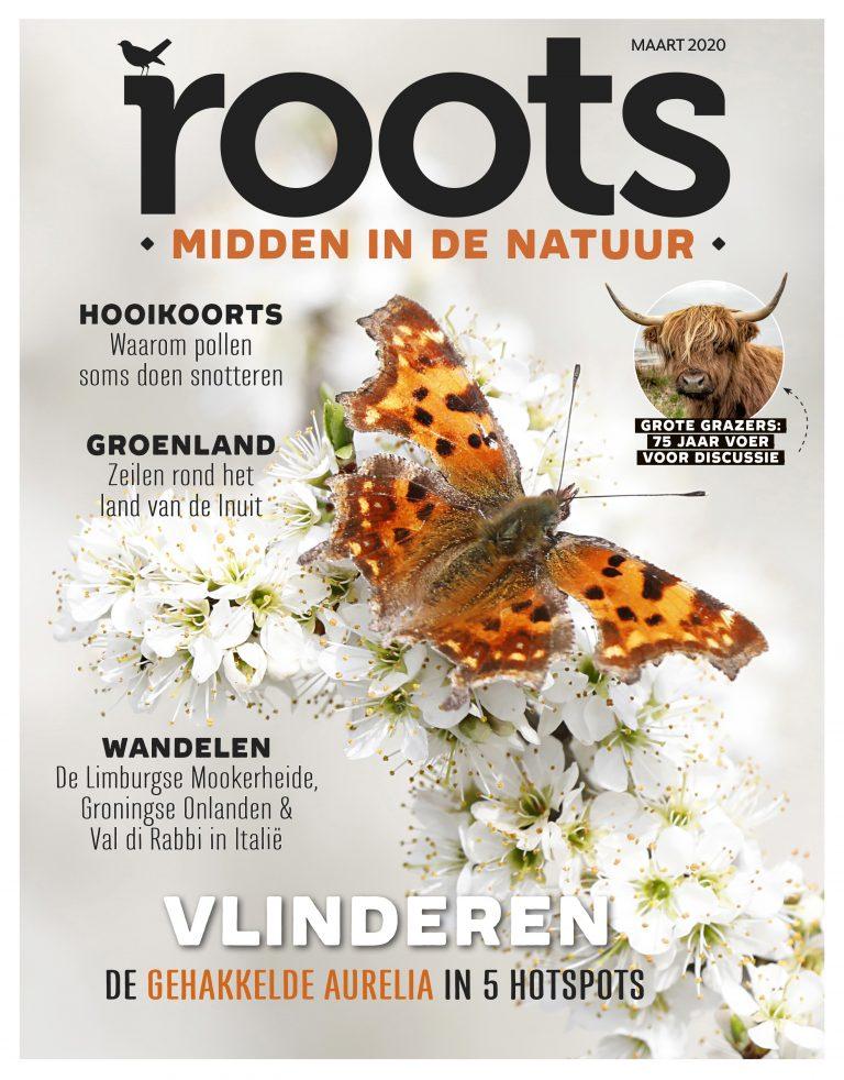 Roots editie 3 – 2020