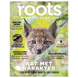 Roots-03-2021