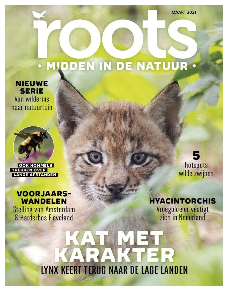 Roots editie 3 – 2021