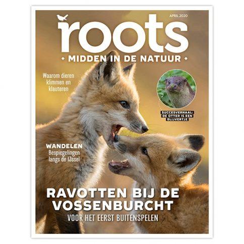 nieuwe roots