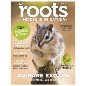 Roots editie 4 - 2021