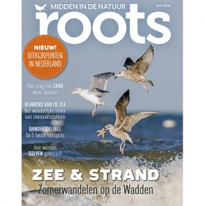 Roots-07-2018_855x900shop