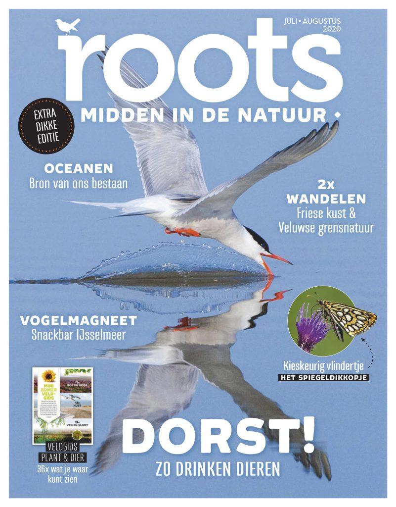 Roots-0708-2020-klein