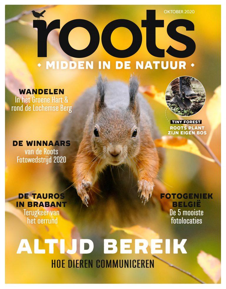 Roots editie 10 – 2020