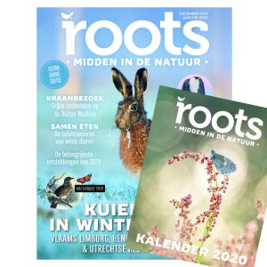 Roots-12-2019_kalender_600x600
