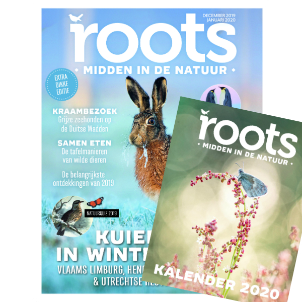 Roots dubbelnummer + Roots Jaarkalender 2020