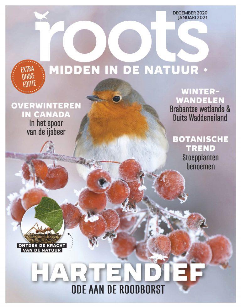 Roots editie 12/01 2021