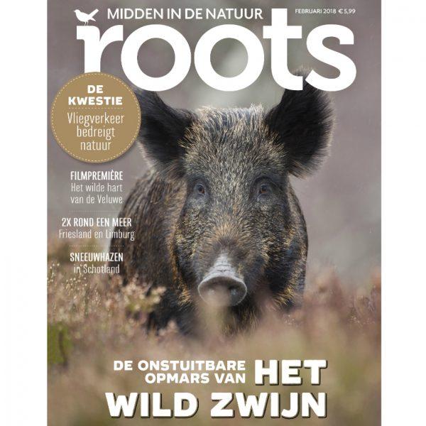 Roots-2-2018_855x900_webshop