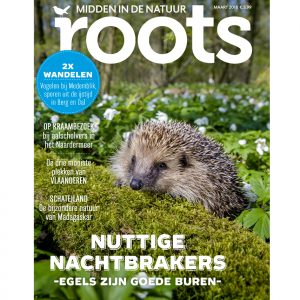 Roots-3-2018_webshop855x900