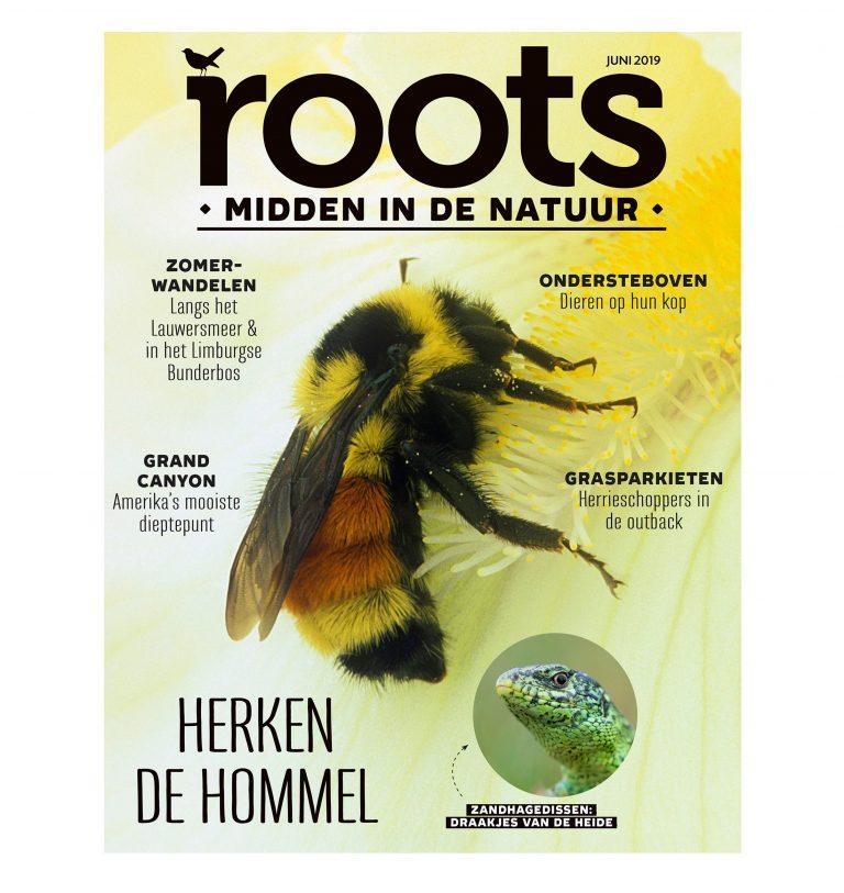 Roots editie 6 – juni 2019
