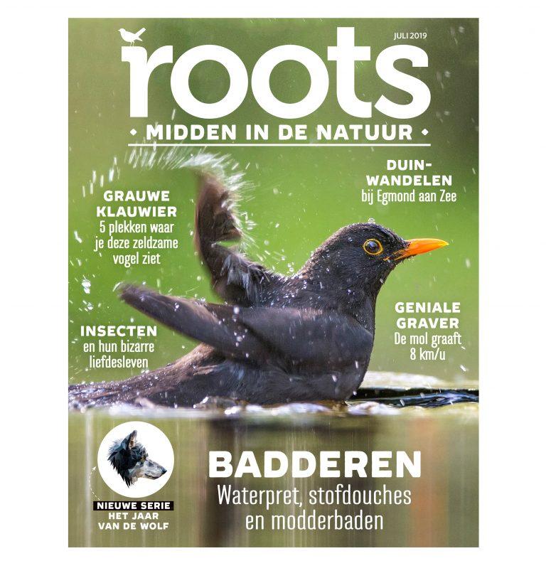 Roots editie 7 – 2019