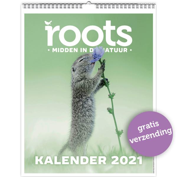 Roots Jaarkalender 2021