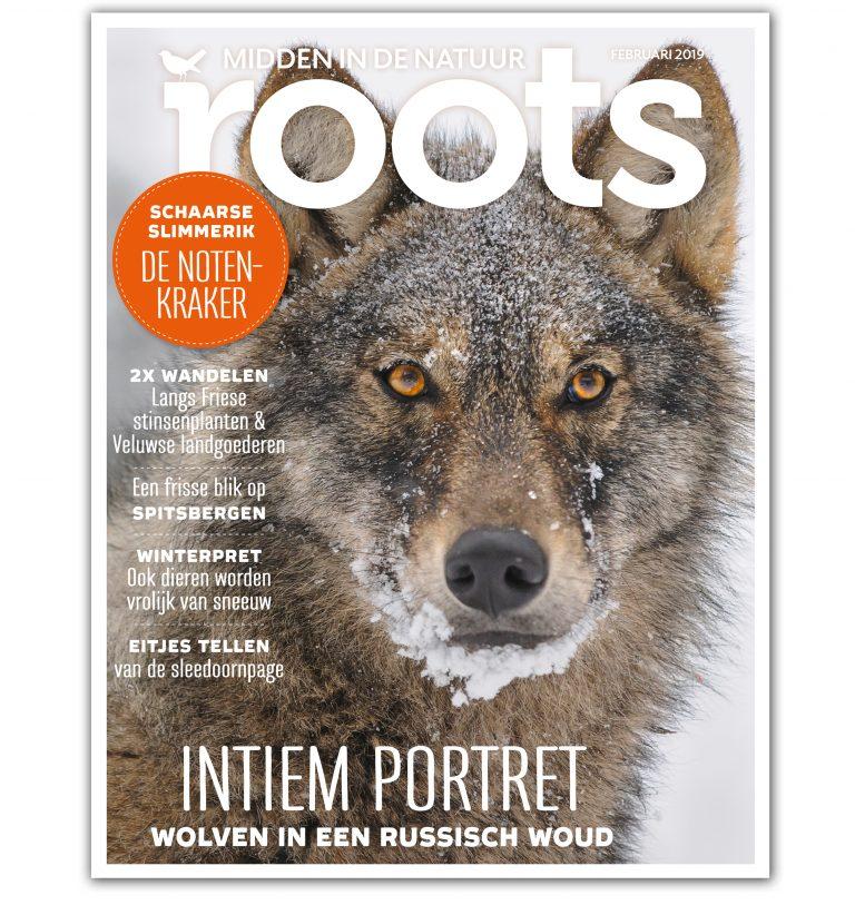 Roots editie 2 – februari 2019