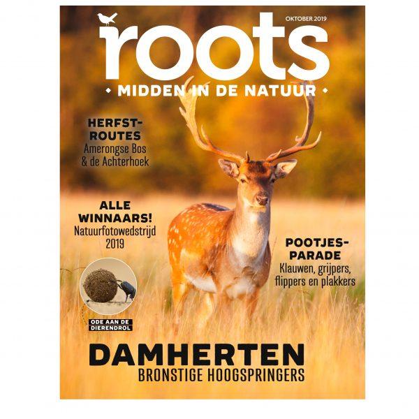 Roots-editie-10-2019