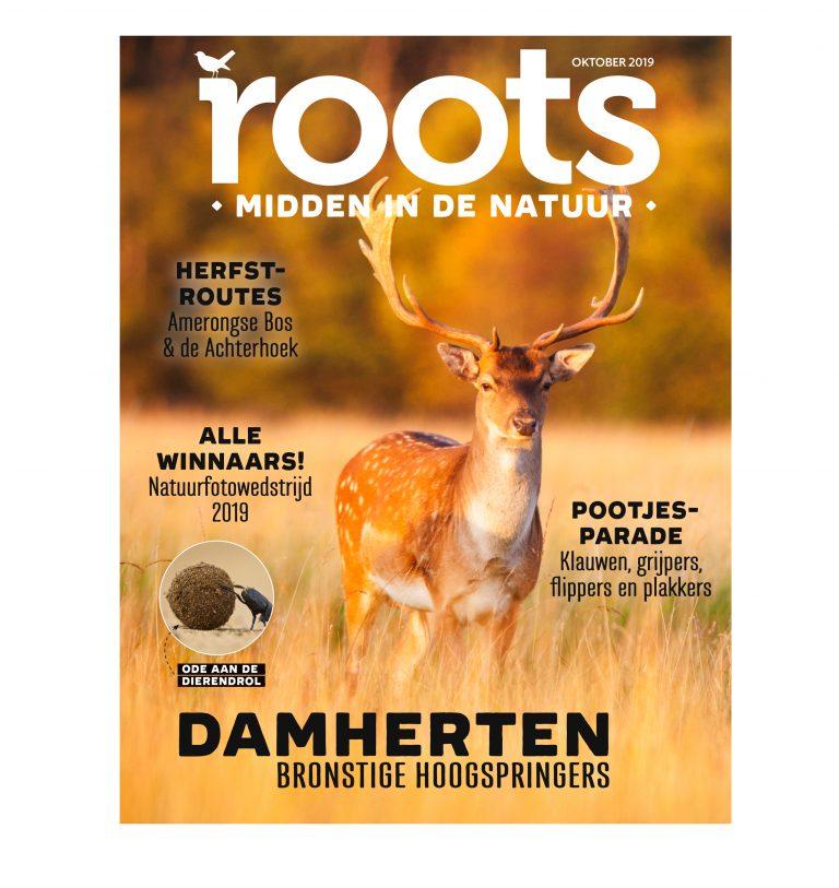 Roots editie 10 – 2019