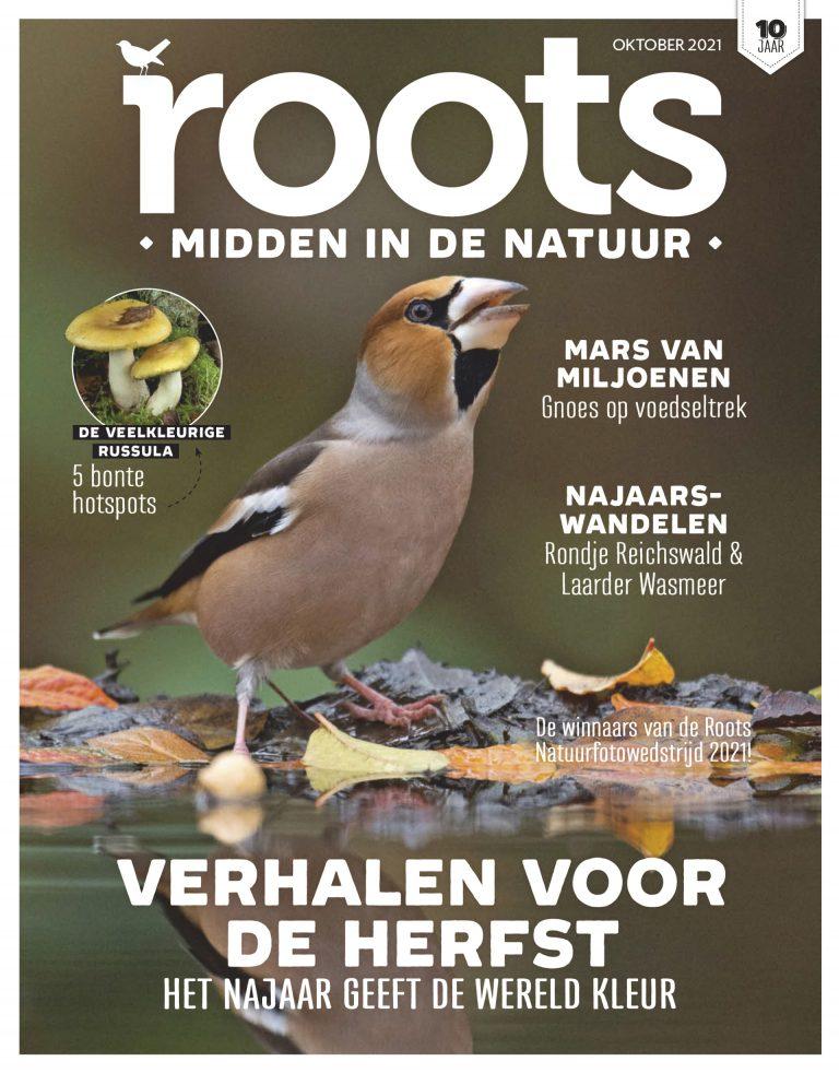 Roots editie 10 – 2021