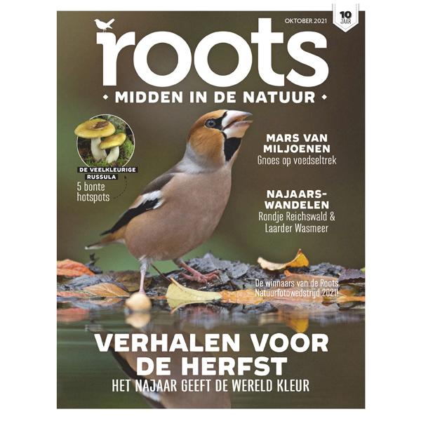 Roots editie 10 - 2021 - wandelen in het Reichswald